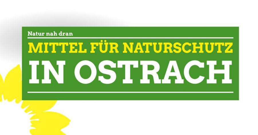 """""""Natur nah dran"""" – Ostrach erhält bis zu 15.000 Euro für mehr biologische Vielfalt"""