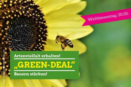 """""""Green-Deal"""" – zum Weltbienentag am 20.05.2020"""