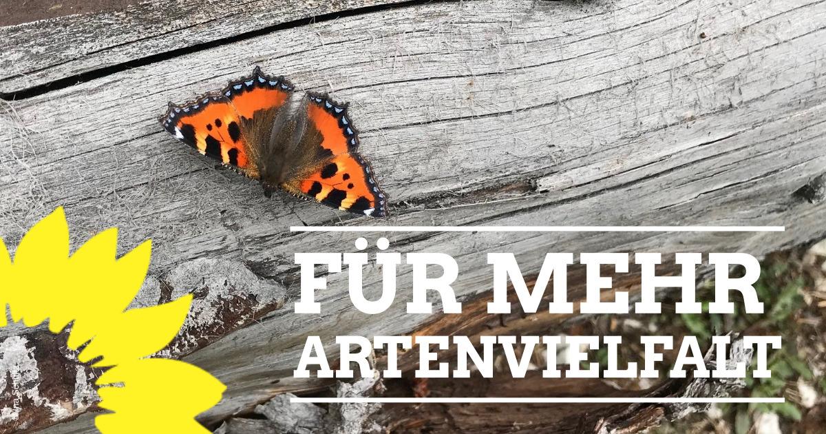 """Landtagsdebatte zur Weiterentwicklung des Volksbegehrens """"Rettet die Biene"""""""