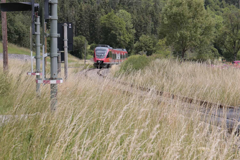 Eine hohe Frequenz von Bahnhöfen ist wichtig für eine attraktive Mobilität im Ländlichen Raum
