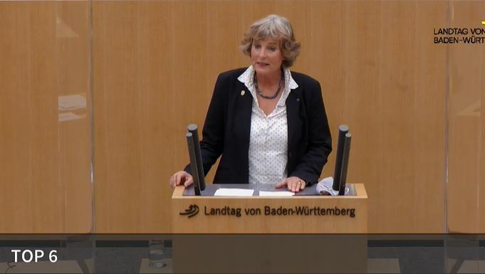 Meine Rede zum Thema Verschleierungsverbot an Schulen