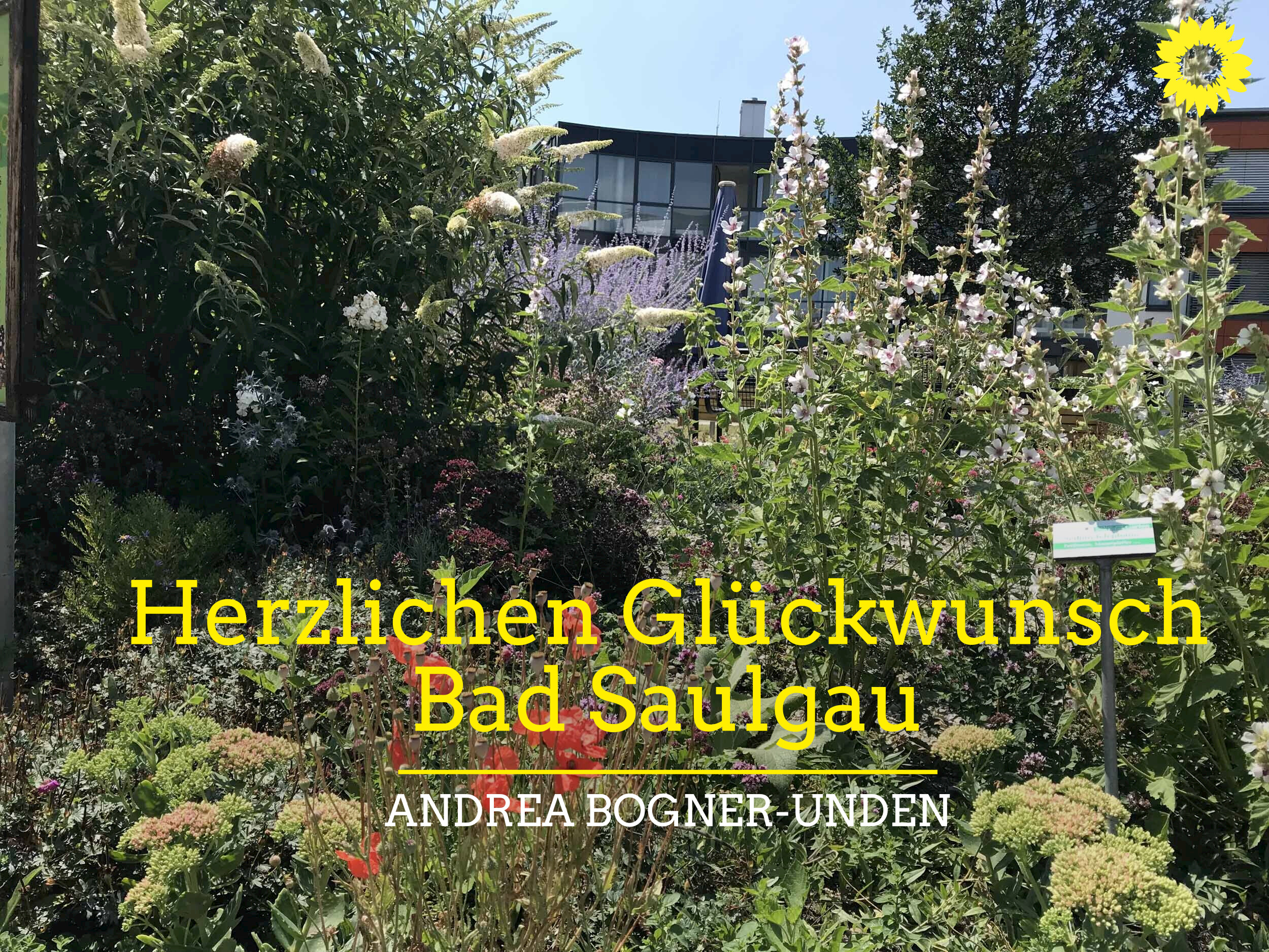 Bad Saulgau mit zweitem Platz bei Start-up BW Local