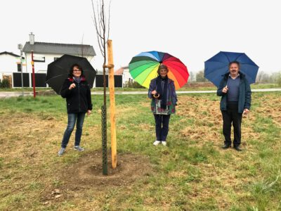 Baumpflanzaktion in Ennetach